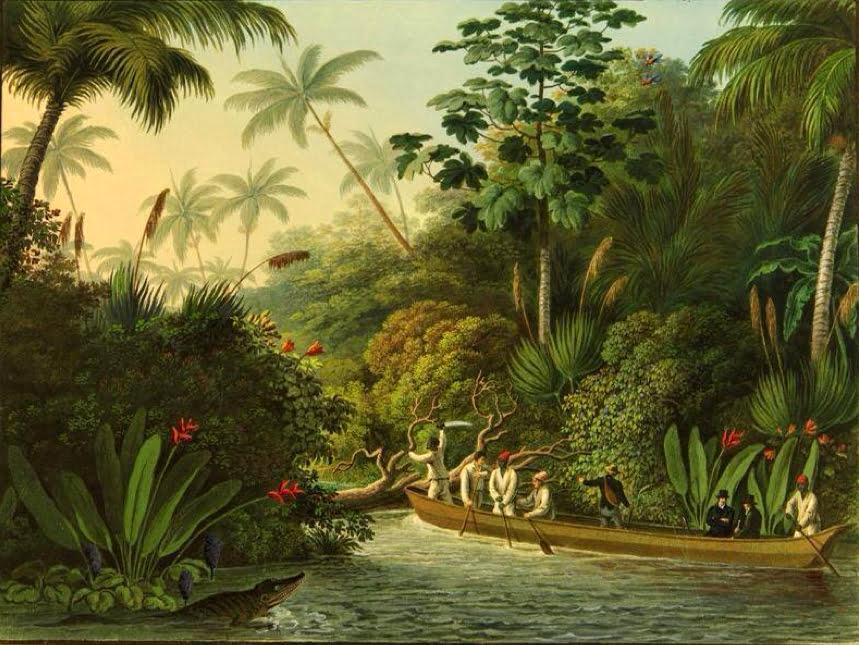 O Rio Doce, imagem de gravura do Rio Doce em 1815