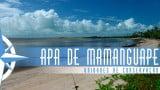 Episódio 40 – Área de Proteção Ambiental da Barra do Rio Mamanguape