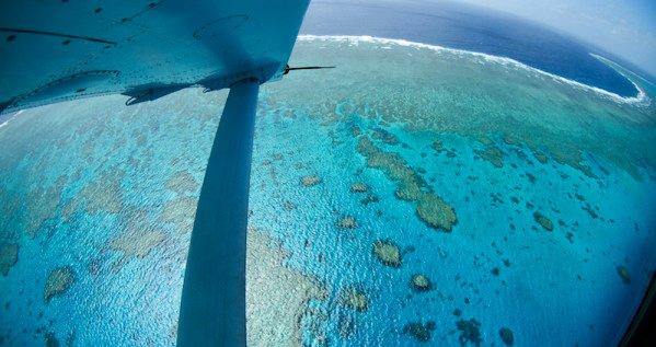Corais ameaçados, imagem aérea de corais