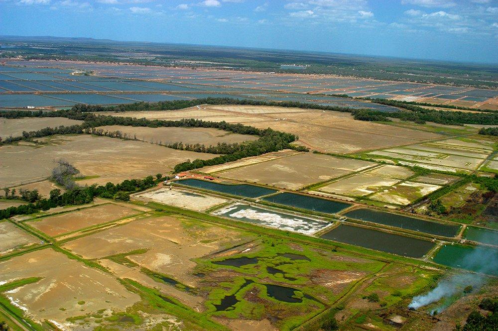 Colapso dos rios brasileiros, imagem da foz do rio Jaguaribe
