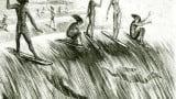 Surpreendente história do surf