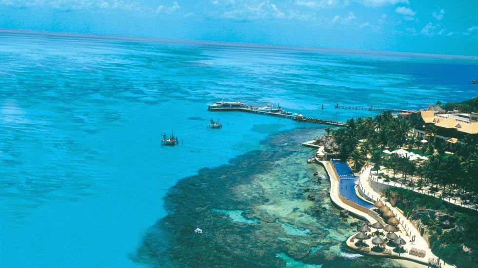 dez corais mais fantásticos, imagens dos arrecifes mesoamericanos