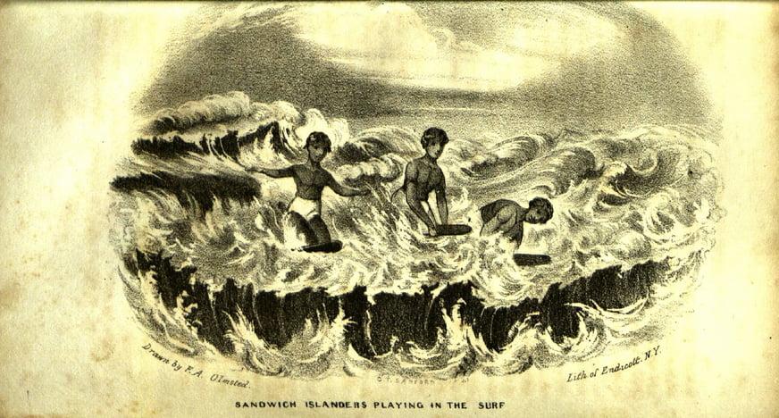 Surpreendente história do surf, ilustração de habitantes das ilhas sandwich surfando