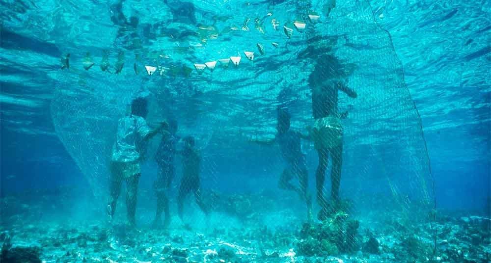 Fotos incríveis no mar, imagem submarina do mar