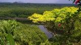 Parques paulistas e a iniciativa privada