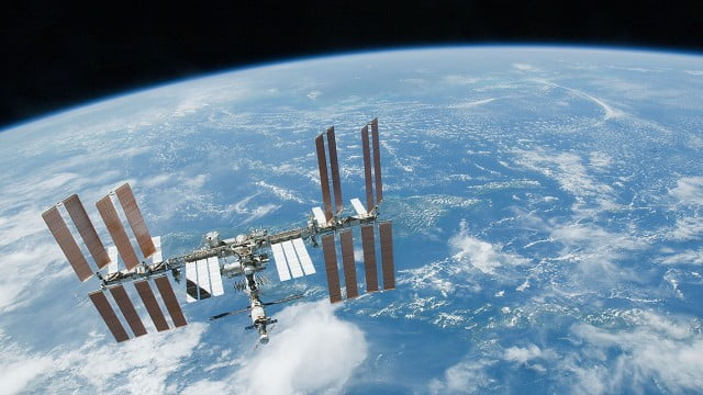 Astronautas encontram plânctons no espaço