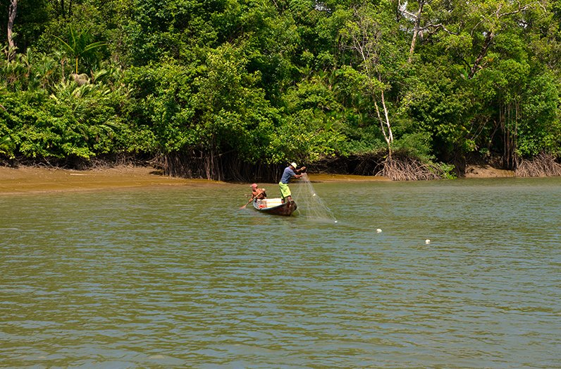 Pesca artesanal: sustentável, ou falácia?, imagem de pescadores com rede em rio