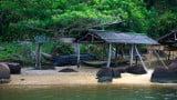 Rio adere às PPPs para áreas protegidas