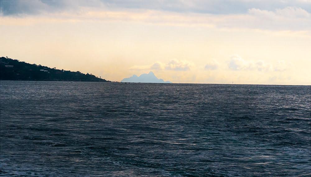 Alcatrazes é Revis, imagem da ilha de alcatrazes