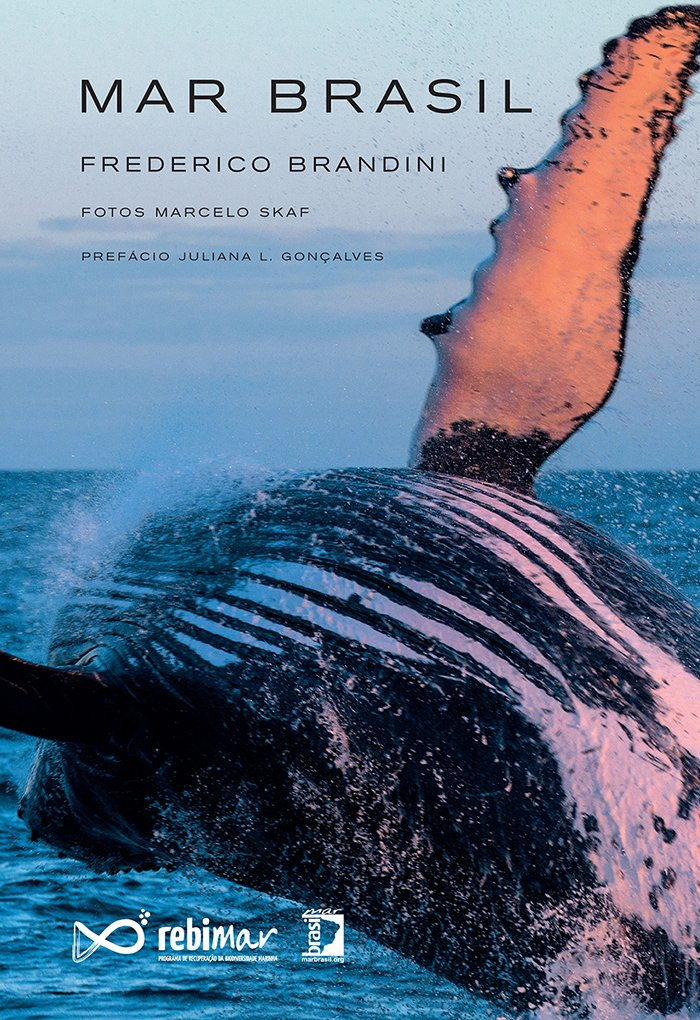 Mar Brasil, de Frederico Brandini, capa de livro mar brasil