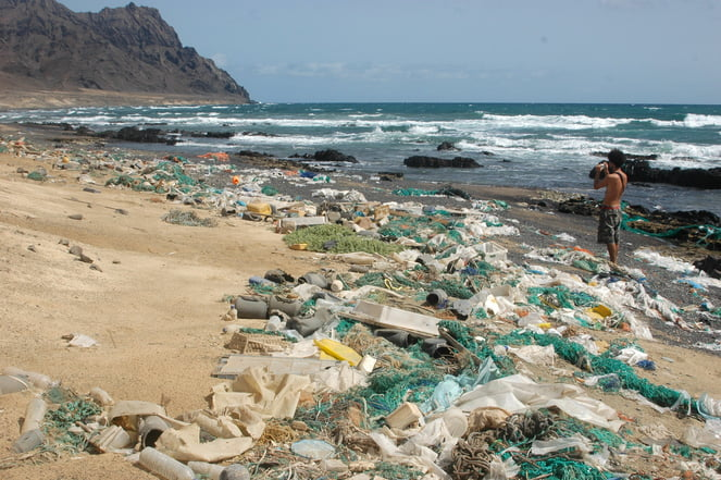 Para ler na íntegra : The Ocean's Great Garbage Patches Might Have Exit Doors