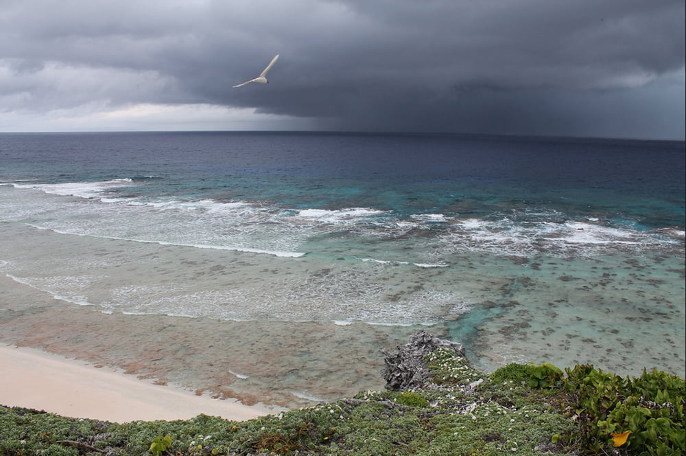 área marinha protegida, imagem de área marinha protegida no mar da Inglaterra