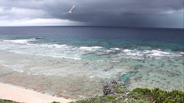 Inglaterra cria nova área marinha protegida