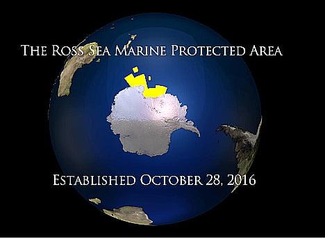 Mar de Ross, última área marinha prístina