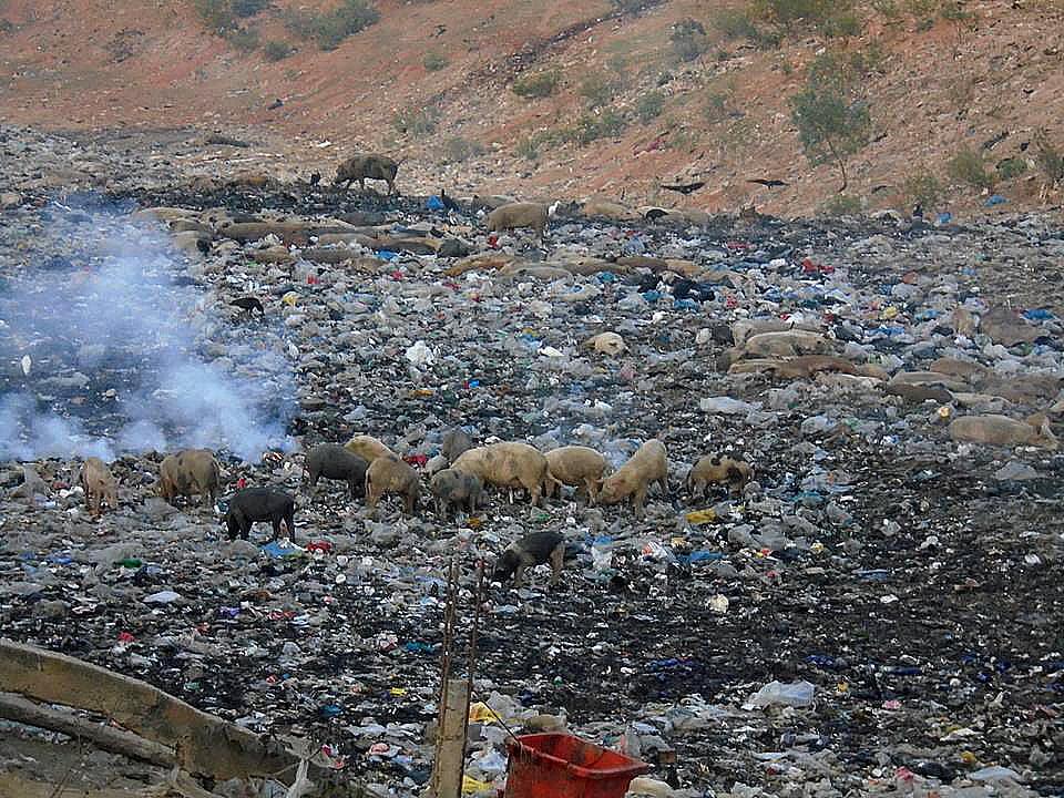 APA/ESEC Guapimirim, imagem de lixão clandestino em São Gonçalo, RJ