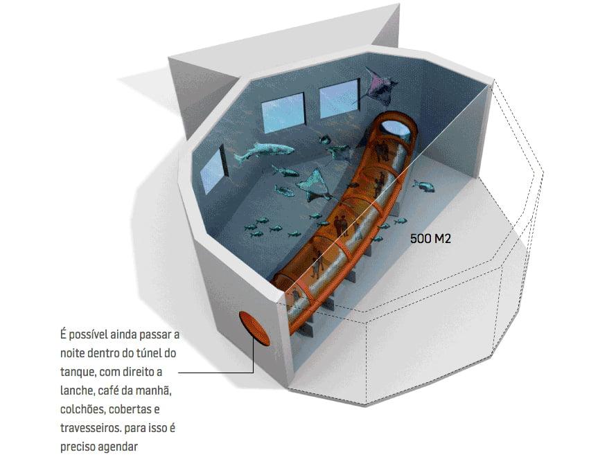 aquário do rio de janeiro, imagem do tanque principal do aquário do Rio de Janeiro