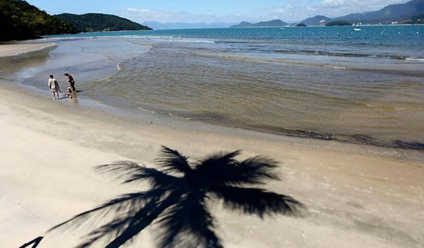 Ubatuba especulação ameaça Mata Atlântica