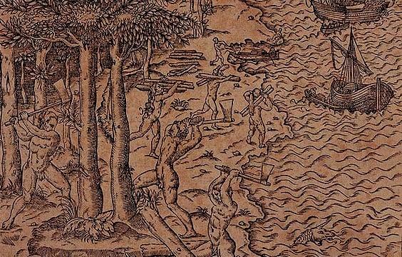 Agronegócio e meio ambiente: provocação