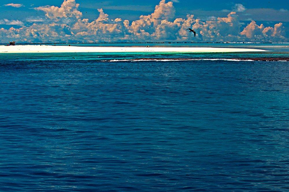 Atol das Rocas, imagem do atol das rocas