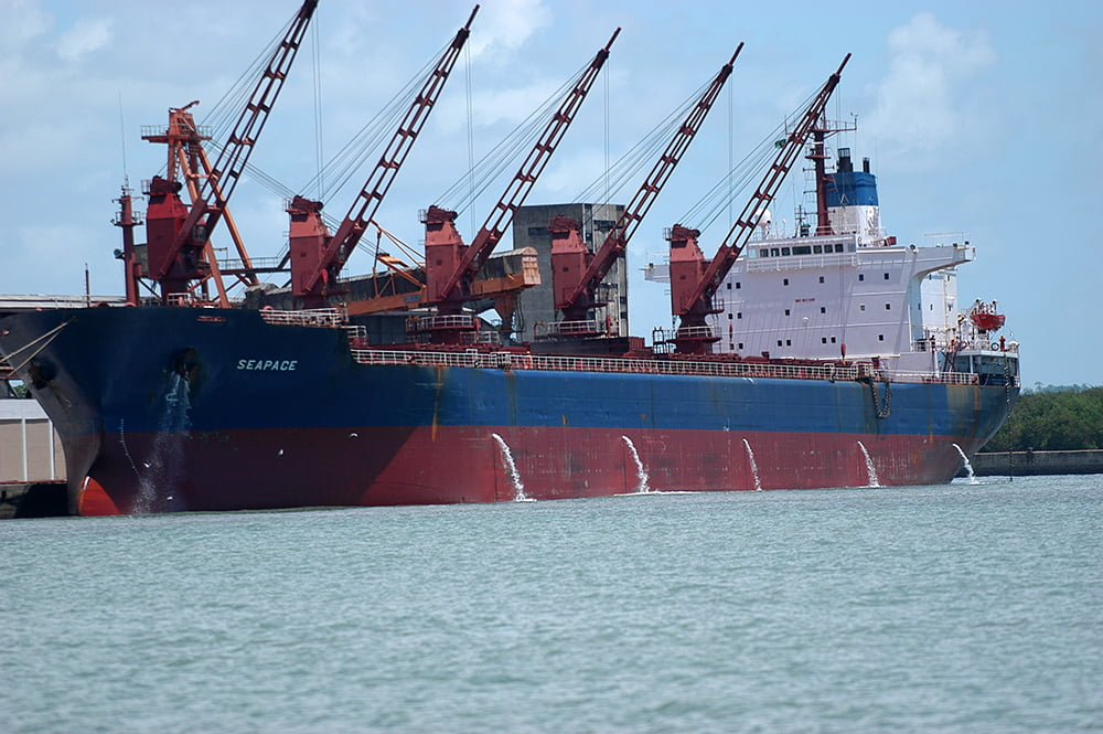 Lago Guaíba e mexilhão- dourado, imagem de navio desmastreando em porto do recife