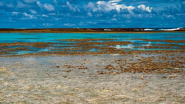 Comitê do Patrimônio pode exigir proteção à corais