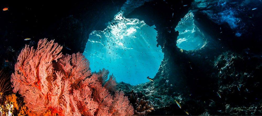 Corais de Raja Ampat, imagem de coarias de raja-ampt-cntraveller.com-
