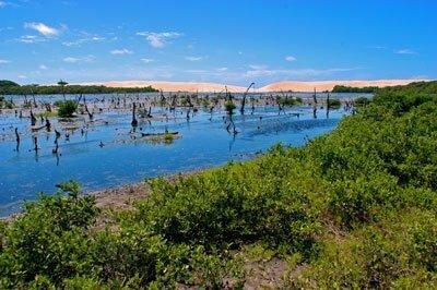 Dez motivos para conhecer o melhor da costa brasileira, imagem do delta do parnaíba