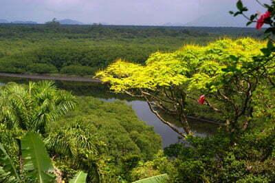 Dez motivos para conhecer o melhor da costa brasileira, imagem da estação ecológica juréia