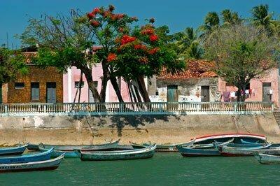 Dez motivos para conhecer o melhor da costa brasileira, imagem da faz do s francisco