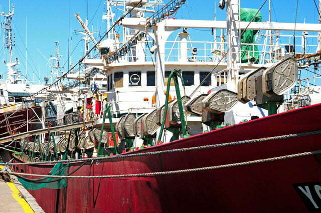 Barco pesquiro de Lulas
