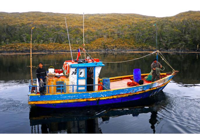 Viagem à Antártica: Punta Arenas - Puerto Natales - Ushuaia, imagem de um barco de pesca chileno