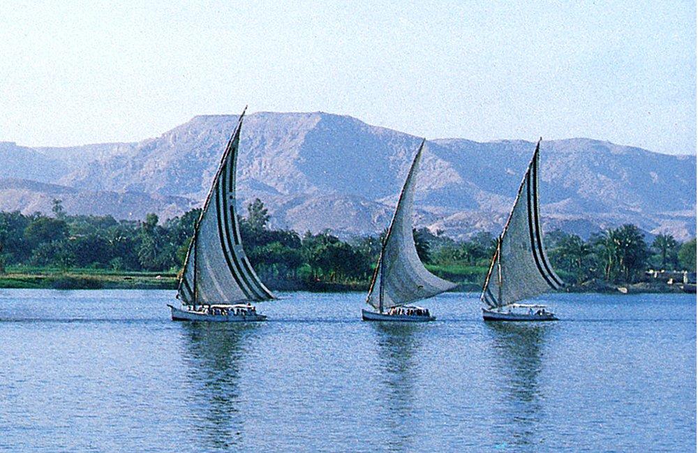 imagem de fleumas no Nilo