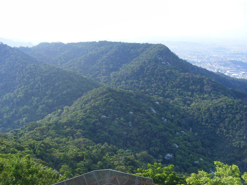 Visitação em UCs, imagem do Parque Nacional da Tijuca