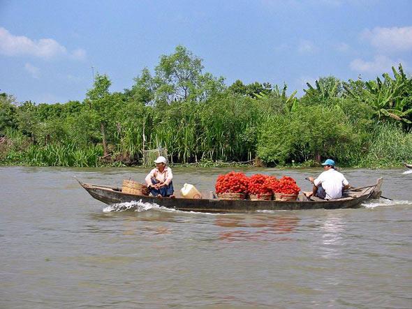 Dez lugares que podem sumir no mar, imagem do delta-do-mekong