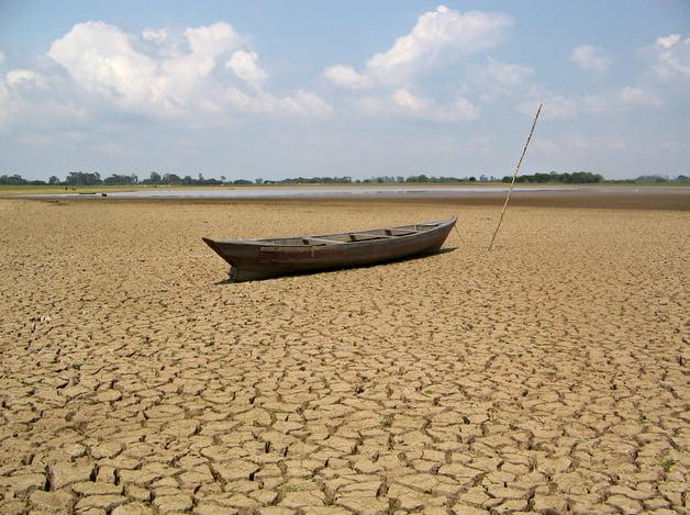 Amazônia pode perder 70% de sua área, imagem de seca na amazônia