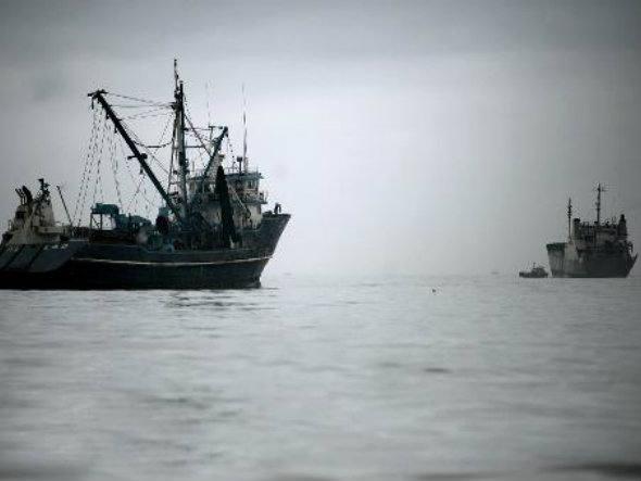 Barbatana de tubarão e matança de golfinhos, imagem de barcos de pesca
