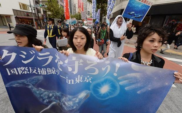Caça de baleias, imagem de manifestação em toquio