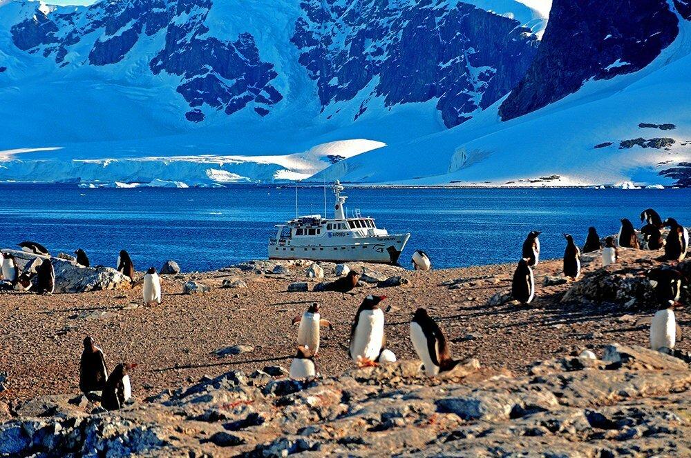 Viagem à Antártica, da base Brown para Cuverville Island, imagem do mar sem fim fundeado na antártica