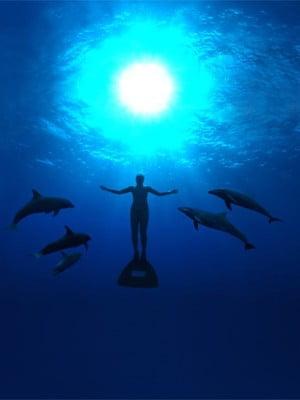 caça de golfinhos no Japão, Cena do documentário 'The cove', sobre a caça de golfinhos no Japão. (Foto: Divulgação)
