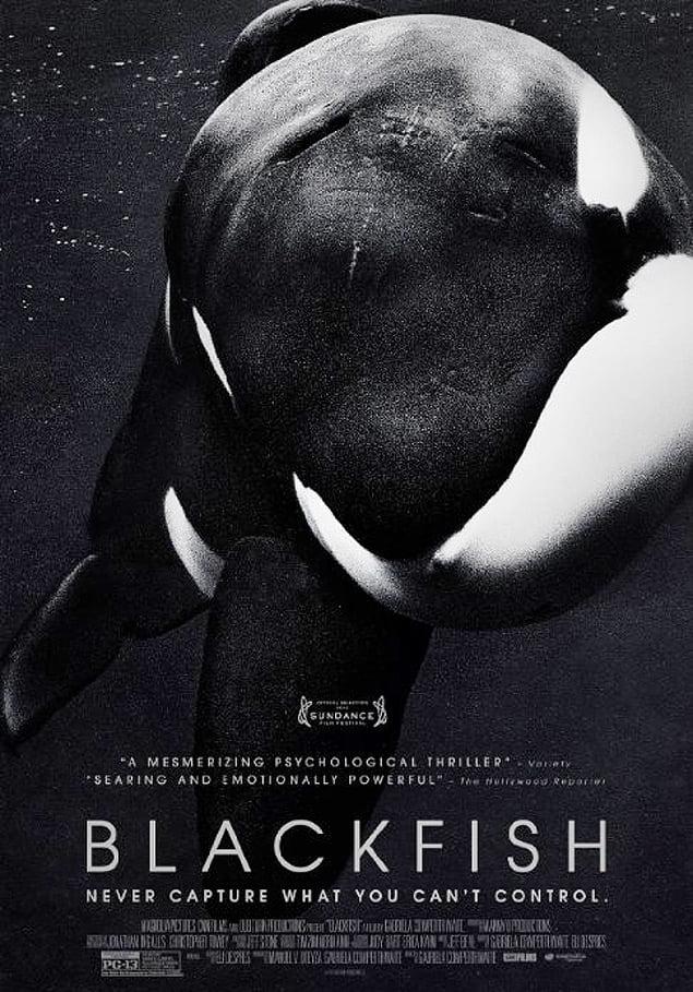 SeaWorld, imagem do pôster oficial do documentário 'Blackfish', sobre orcas em cativeiro