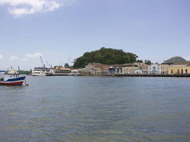Toninhas são protegidas na Baía da Babitonga, imagem de são francisco do sul