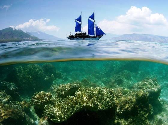 Brasil: cuide melhor da saúde do seu oceano, imagem do mar