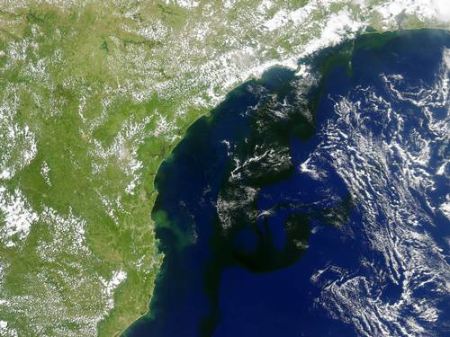 Concentração de algas na costa do Rio, imagem da nasa de algas na cota do RJ