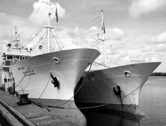 imagem de navio de pesca do atum no Brasil