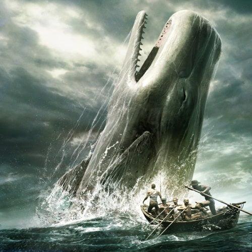 fato estranho sobre as baleias, Mobi Dick era real.