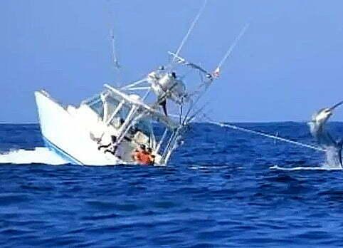 pesca esportiva ,imagem de pescaria de marlin quando o peixe quase vira a lancha.