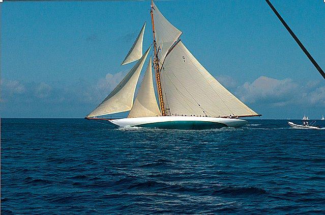 imagem de Veleiros embelezam o mar