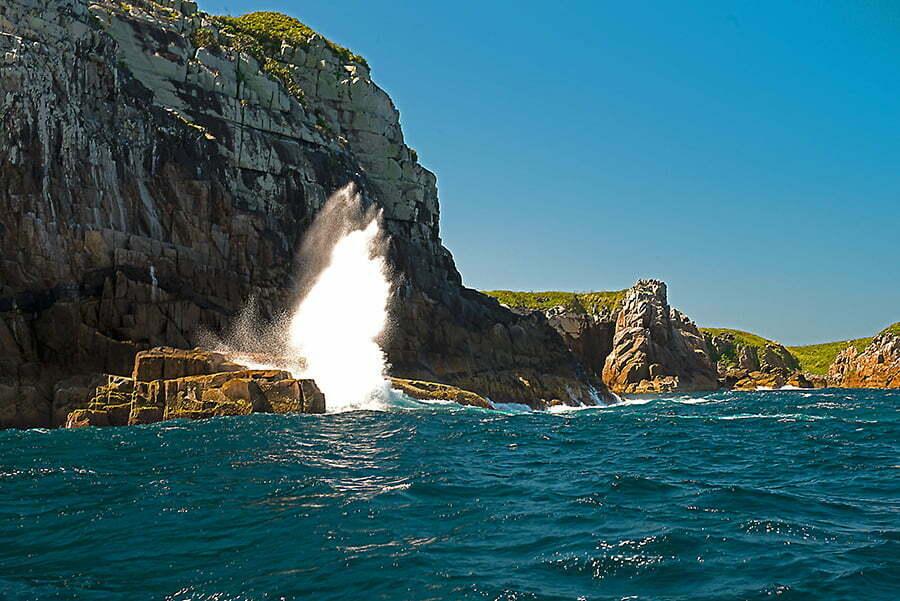 Reserva Biológica Marinha do Arvoredo, Santa Catarina, imagem do cotao-e-onda-ilha-Dserta,-SC--Reserva Biológica Marinha do Arvoredo