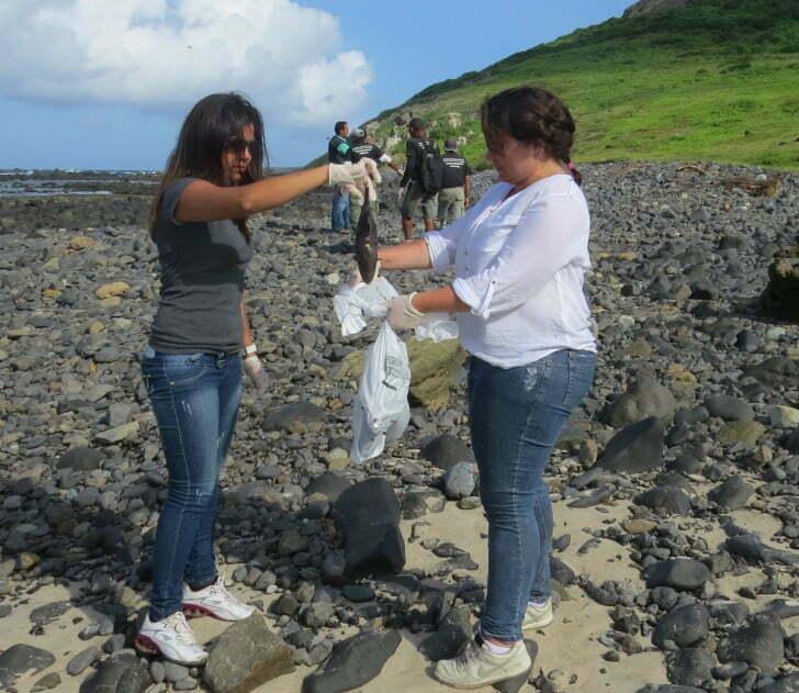 morte de peixes, imagem de ambientalistas recolhendo peixes mortos em fernando de noronha