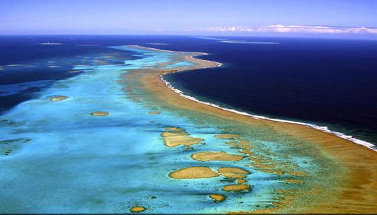 barreira de coral da Nova Caledônia, área marinha protegida na França